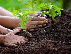 carbon-footprint-reduced-1