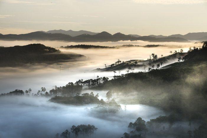Fog over Dalat, Vietnam