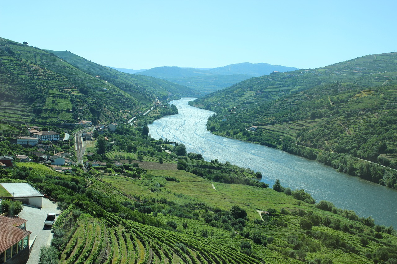 Scenic Landscape in Douro