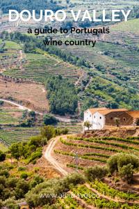 Douro Valley Guide Portugal