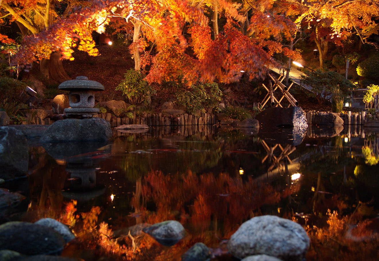 Fall leaves over and onsen